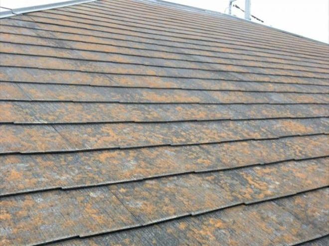 【施工前】つくば市で築21年、二階建て。屋根に苔がたくさん生えて茶色い屋根に見えます。(本当はグレー系の色です)